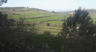 Terreno in Vendita A Niscemi (Caltanissetta)
