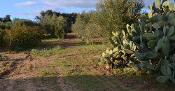 Terreno con Fabbricato in Vendita Caltagirone (Catania)