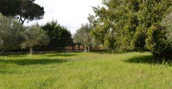 Terreno edificabile in Vendita a Caltagirone (Catania)